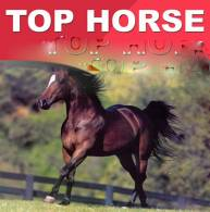 Tom Console's Top Horse + Len's In The Groove at a Discount!
