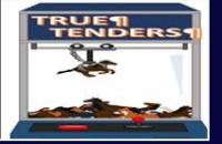 True-Tenders, Advanced! the Software!!  Includes FREE New Strategic Longshots, v.3.0!!