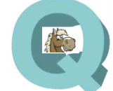 'Q' – Quick, Super Consistent, Great Prices, High Win % – The Lazy Man's Way to Racetrack Profits!  Now on Software, Too!!