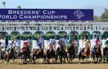 Belmont/Santa Anita/ The Breeders' Cup – Get The Nation's Leading Handicapping Selection Service, ECHR & WCHR for a very Special Price – Just $99!!