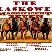 The Blaskower Magnificent 7! Software & P&P/Ebook