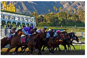 ECHR/WCHR Winter Racing Deluxe Selection Package From Rob Henie!  GULFSTREAM & SANTA ANITA!!  Bob Baffert Approved!  Act Now – Save 50%!!!