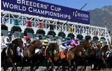 Fall Racing Deluxe Selection Package From Rob Henie!  Belmont Park, Santa Anita & The Breeders' Cup!!!  Act Now – Save 50%!!!